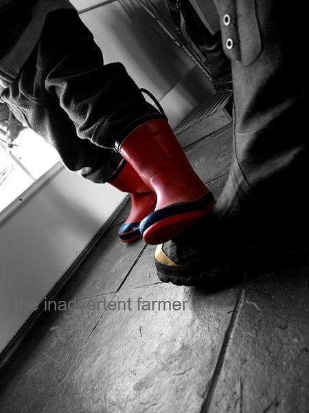 Feet boots red muck farm
