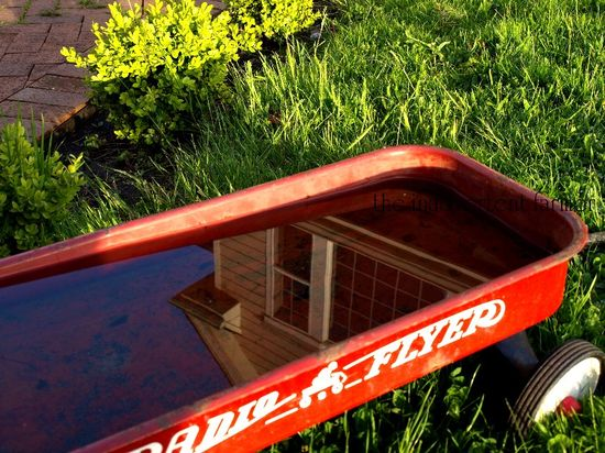 Radio flyer water reflection