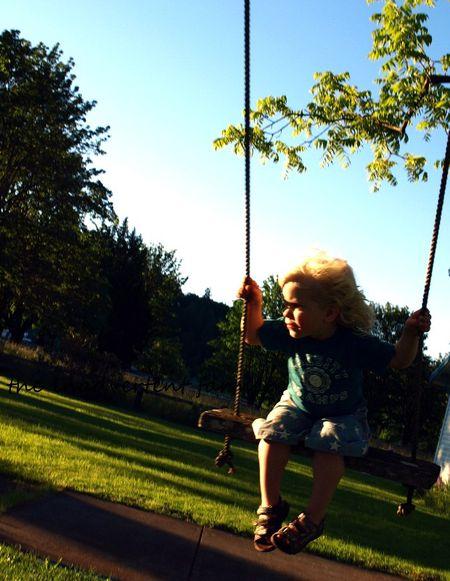 Swing tree boy lake sunset