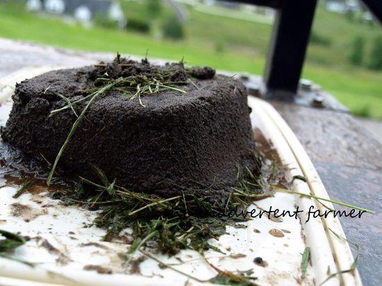 Mud sand cake grass frosting