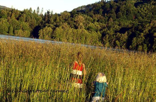 Grassy field kids hide