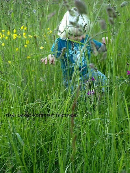 Grassy field boy stomp