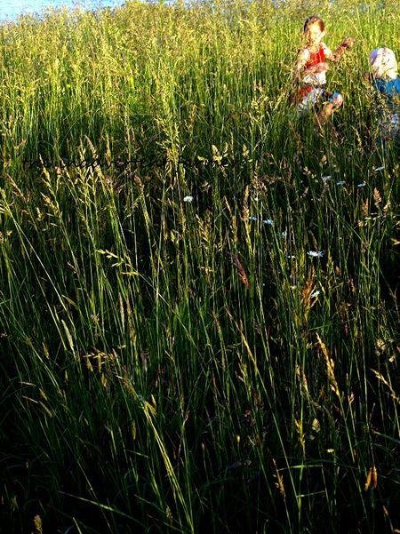 Grassy field girl dance