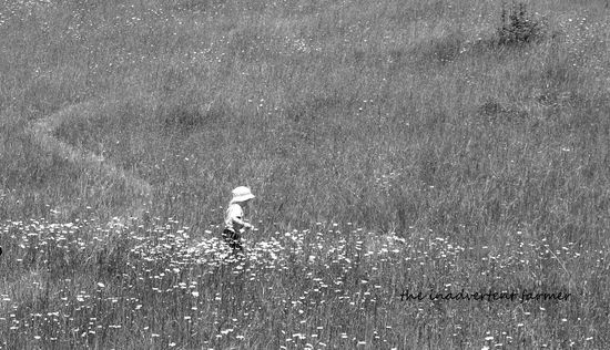 Grass field black white boy