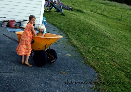 Grassy feet wheelbarrow mowed lawn