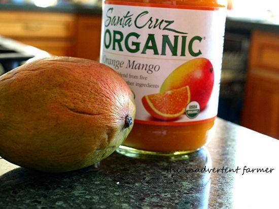 Mango fruitcicles juice