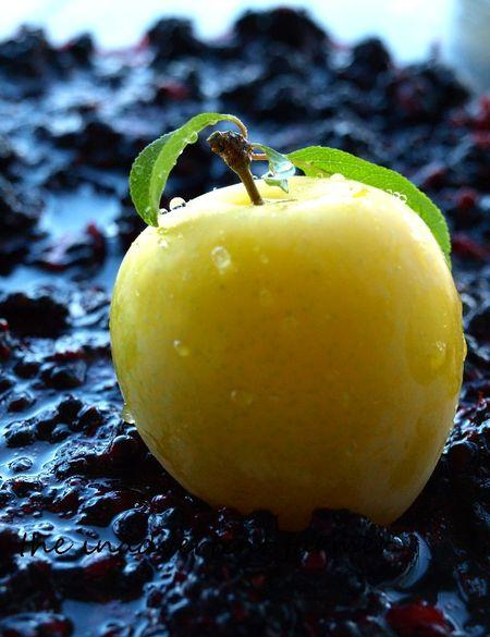Plum yellow marionberry still life