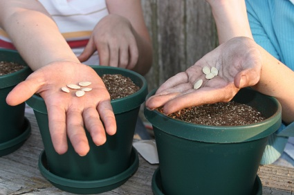 Seeds_in_hands