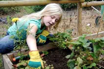 GardeningWKids