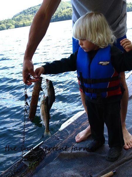 Fishing trout lake boy