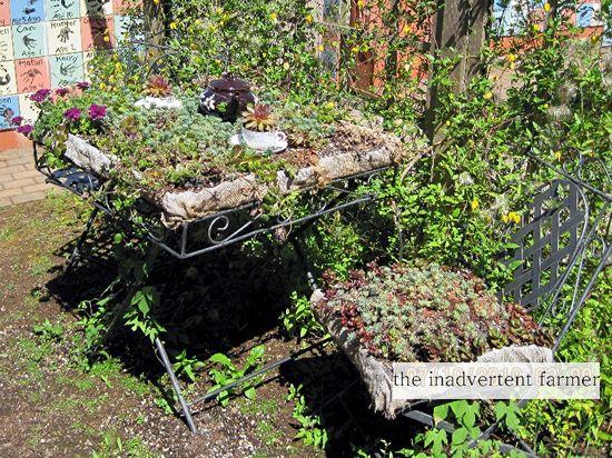 Tea table garden