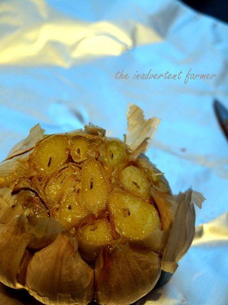 Garlic clove head olive oil roast