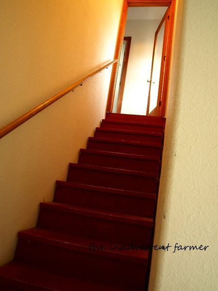 Shop stairs red