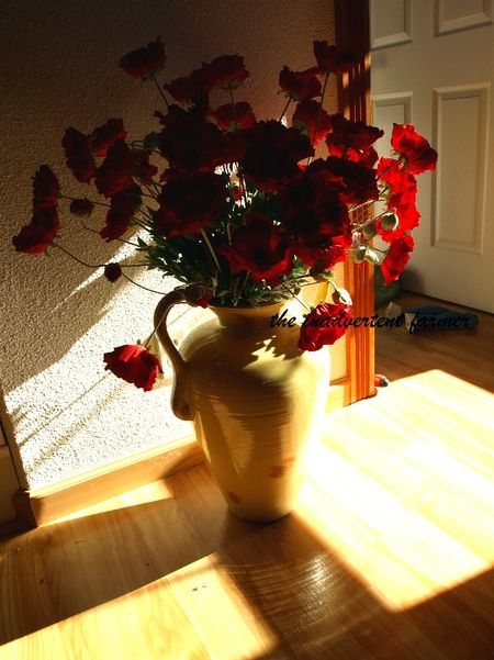 Apartment decorations red poppies vase