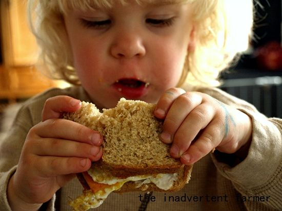Big kids egg sandwich boy1