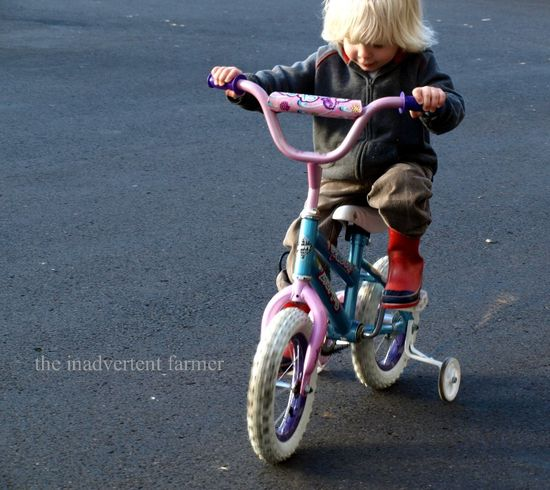 Little boy rides bike