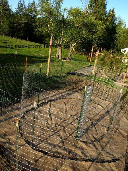 Maze garden fencing