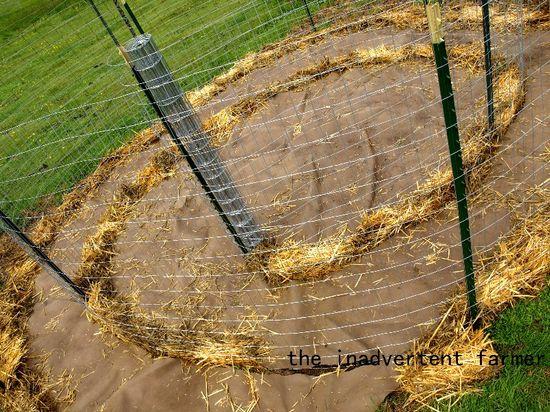 Maze garden straw2