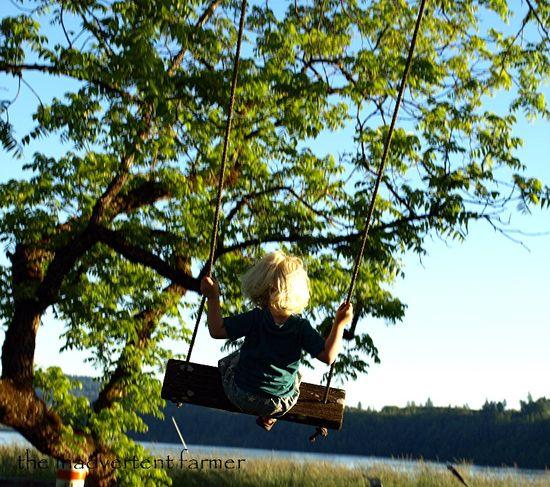 Swing lake baby boy tree joy