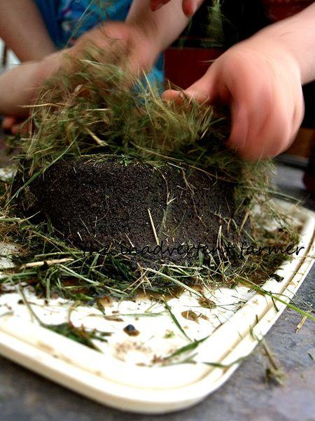Mud sand cake grass