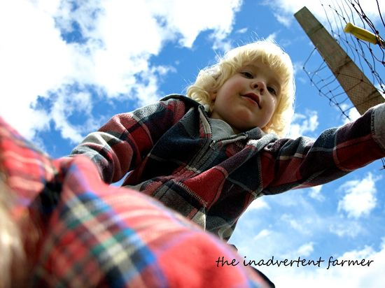 Rearview blue sky blond boy