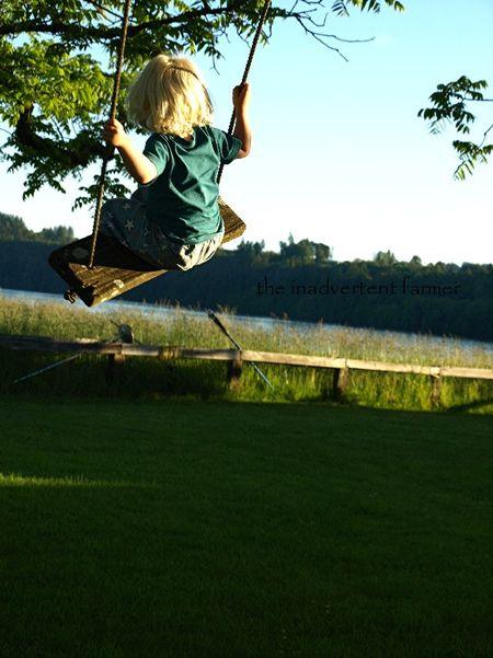 Swing lake baby boy tree blond