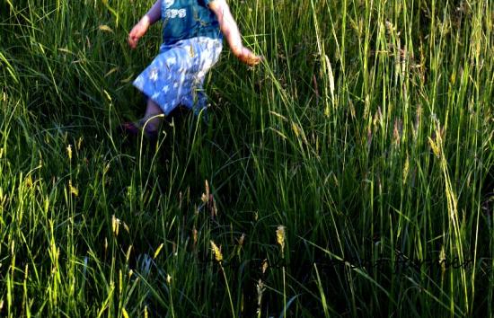 Grassy field boy feet walk
