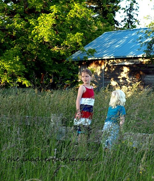 Grassy field kids on fence