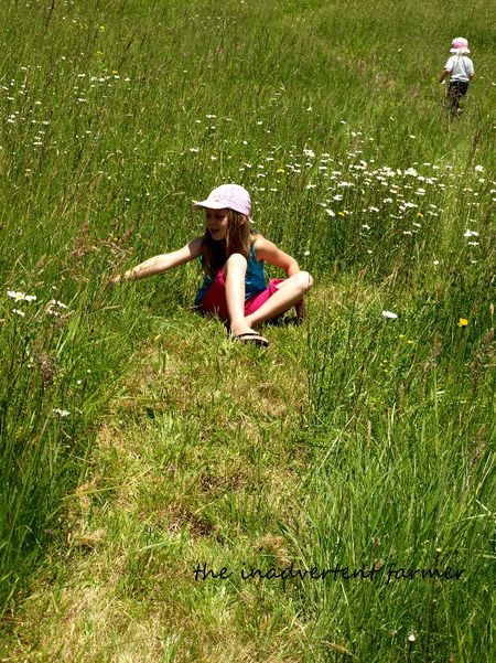 Grass field girl pick flowers