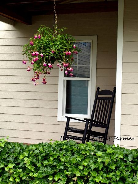 Fuschia front porch rocker