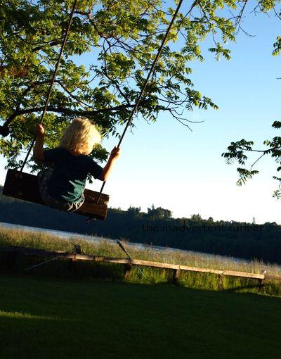 Swing lake baby boy tree