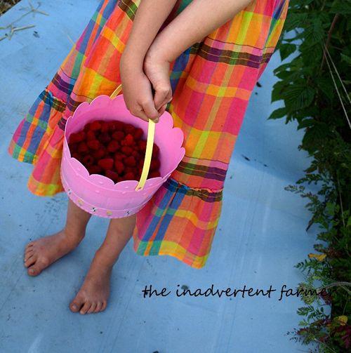Raspberry picking girl dress