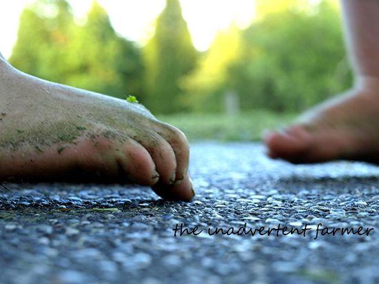 Feet bare girl toe grass