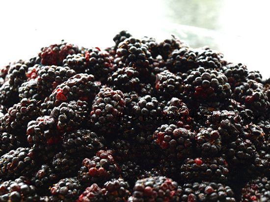 Marionberries jam