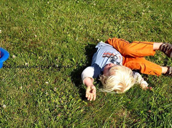 Grass sledding boy fall