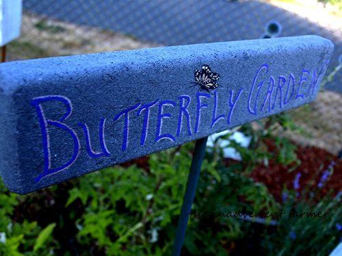 Master gardener demo butterfly