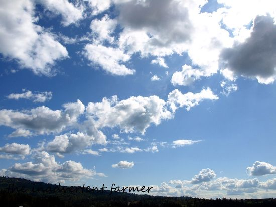 Clouds white blue sky summer