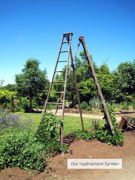 Ladder tower