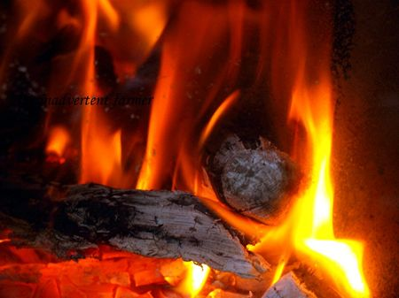 Fire woodstove