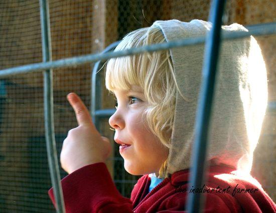Boy finger point