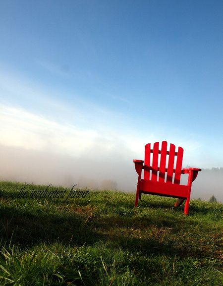 Red chair field mist