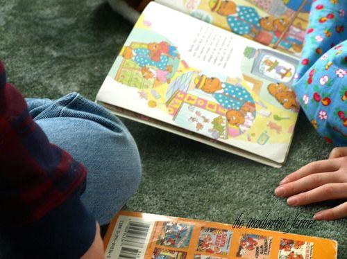 Reading berenstein bears