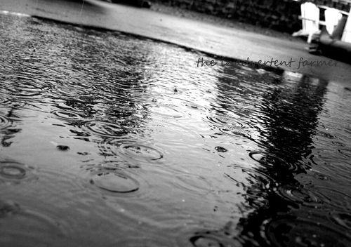Rain driveway puddle black white