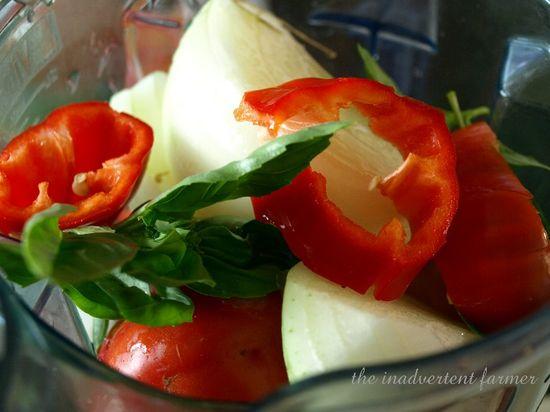 Tomato sauce2
