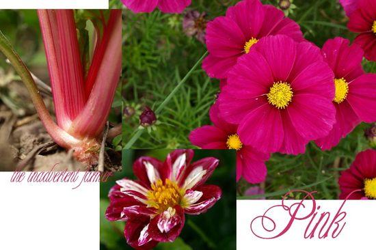Pink garden collage