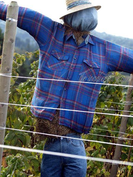 Scarecrow blue man