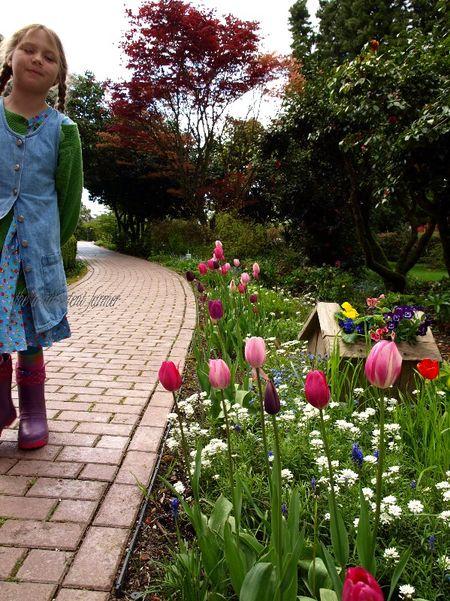 Garden tour tulips walk