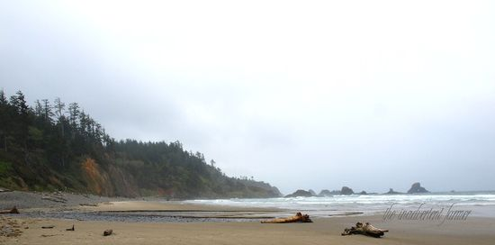 Beach indian oregon