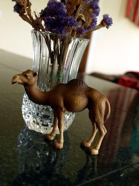 Camel toy memorial