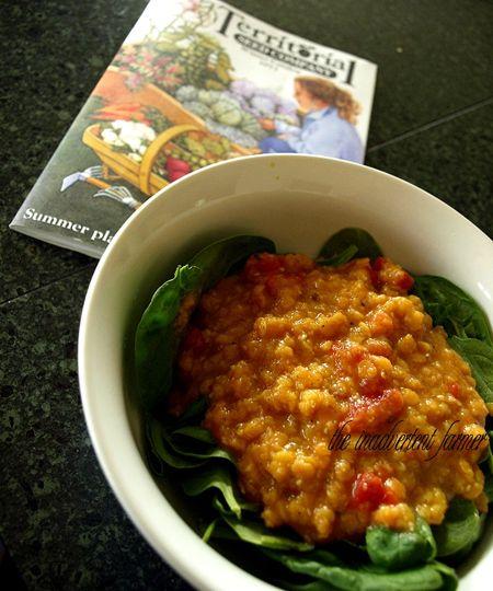 Lentil spinach salad seed catalog